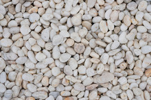 Beautiful Smooth White Pebbles...