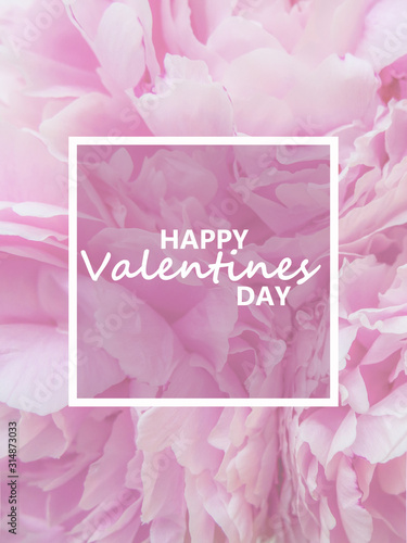Fototapeta text valentines day in a frame on a background of pink peonies flowers. postcard obraz na płótnie
