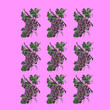 canvas print picture - grape icons on isolated purple background. pattern illustration