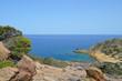 The palm beach of Vai Crete Greece