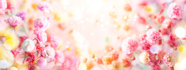 Spring floral composition made of fresh colorful flowers on light pastel background. Festive flower concept with copy space.