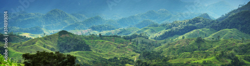 obraz lub plakat Green hills