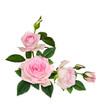 Pink rose flowers corner arrangement