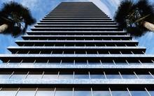 Skyscraper With Palm Trees Aga...