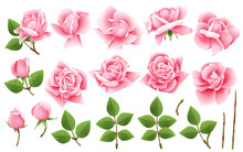 Set Of Floral Elements For You...