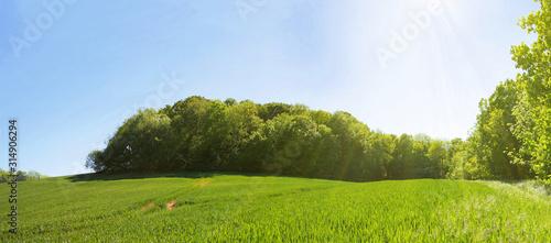 Frühsommerliche Sonne über weiter Landschaft, Panorama Canvas-taulu