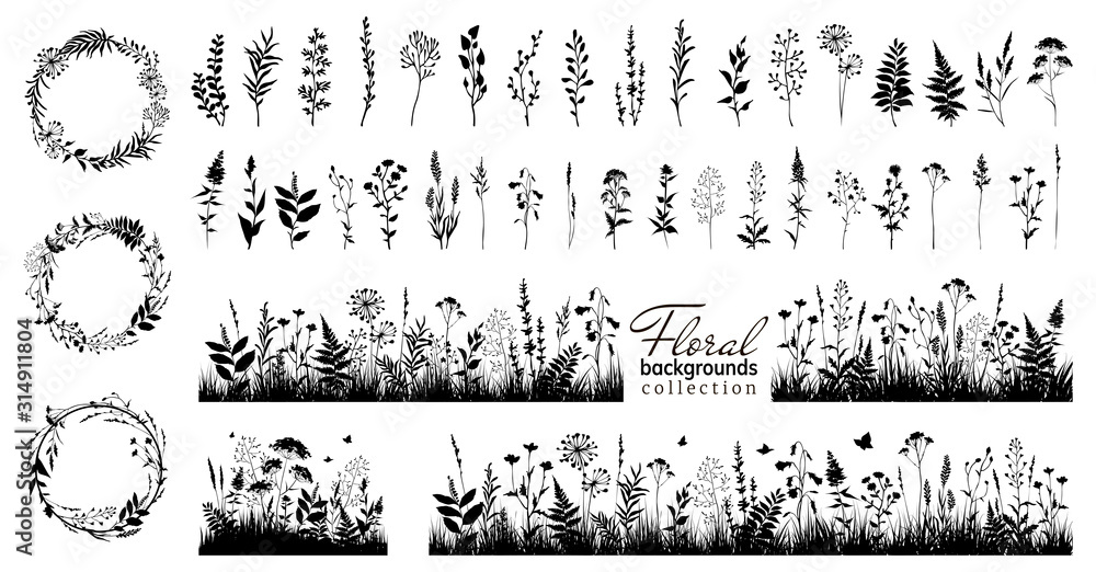 Fototapeta Big floral collections of black silhouettes of meadow herbs, floral backgrounds and wreaths. Wildflowers. Wild grass. Floral elements for your design. Vector illustration.