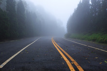 Country Road With Foggy At Tha...