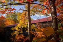 Albany Covered Bridge By A Fall Afternoon