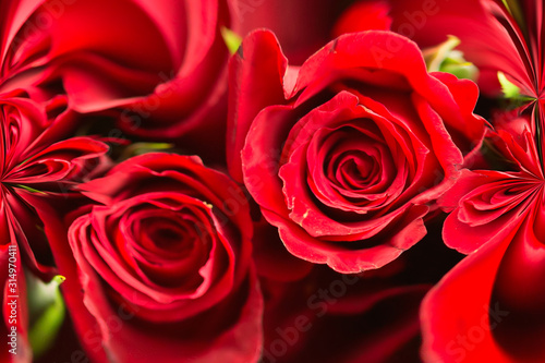 abstract rose background with center space let for your text logo or design