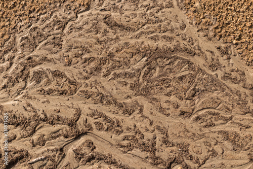 Photo  View from above on land surface, mud dirt and sand texture
