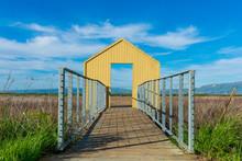 Open Gate To Nature. Boardwalk...