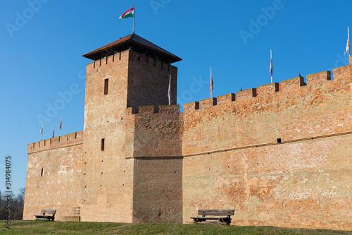 Photo  The beautiful Gyula Fortress