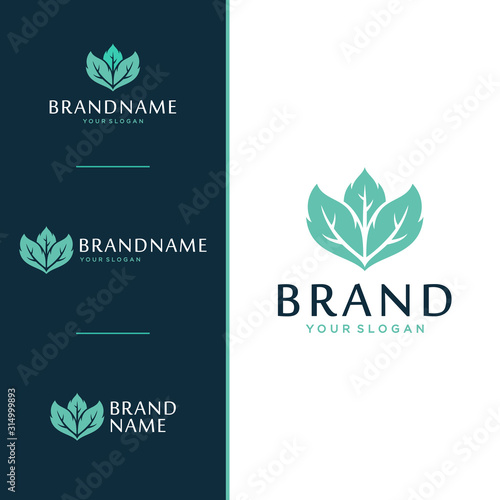 Fototapeta Leaf logo and icon design concept. obraz na płótnie