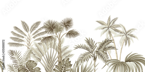 Tropical vintage beige botanical landscape, palm tree, banana tree, plant floral seamless border white background. Exotic green jungle wallpaper.