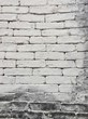 white painted brick wall, background texture