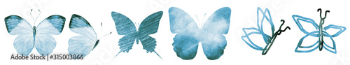 Fotografia, Obraz SIx watercolor butterflies, isolated on white background