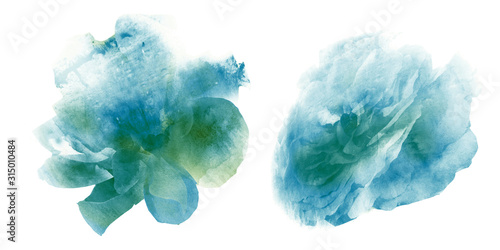 Watercolor flowers , isolated on white background - 315010484