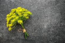 Fresh Yellow Dill Flower On Da...