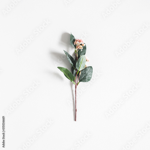 Obraz Flowers composition. Flower on pastel gray background. Flat lay, top view - fototapety do salonu
