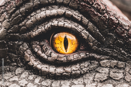 Cuadros en Lienzo Eye of the dinosaurs with terrifying.