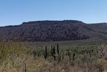 Pustynne Górskie Tereny Stanu California W Meksyku
