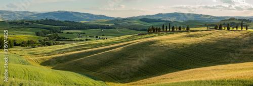 obraz dibond Tuscany - Landscape panorama, hills and meadow, Toscana - Italy