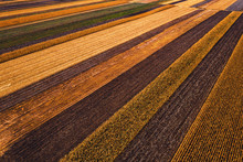 Agricultural Fields From Above...