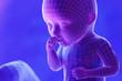 Leinwanddruck Bild - 3d rendered abstract illustration of a fetus - week 34