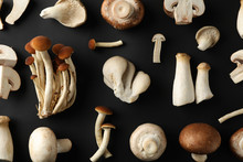 Flat Lay With Different Mushrooms On Black Background, Top View