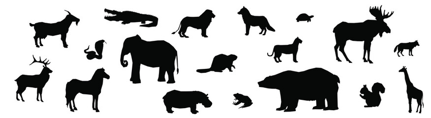 wild animals black