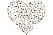 Australian animals in heart shape. Wildlife animals: Emu, Echidna, Tasmanian Devil, Wombat, Kangaroo, Wallaby and Penguin, Ducks, Snakes Lizards and Horse. Isolated on white background
