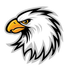 Hawk Eagle Head USA  Logo Masc...