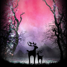 Deers In The Magical Forest Si...