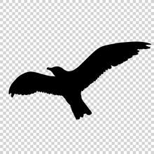 Detailed Bird Black Silhouette...
