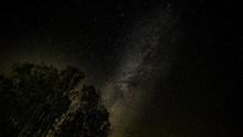 Árboles Vía Láctea