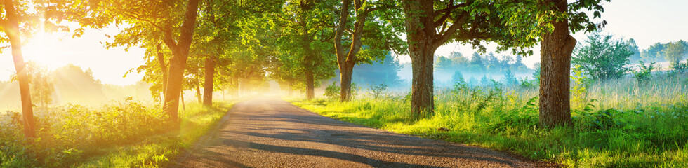 Asphalt road on early autumnal morning