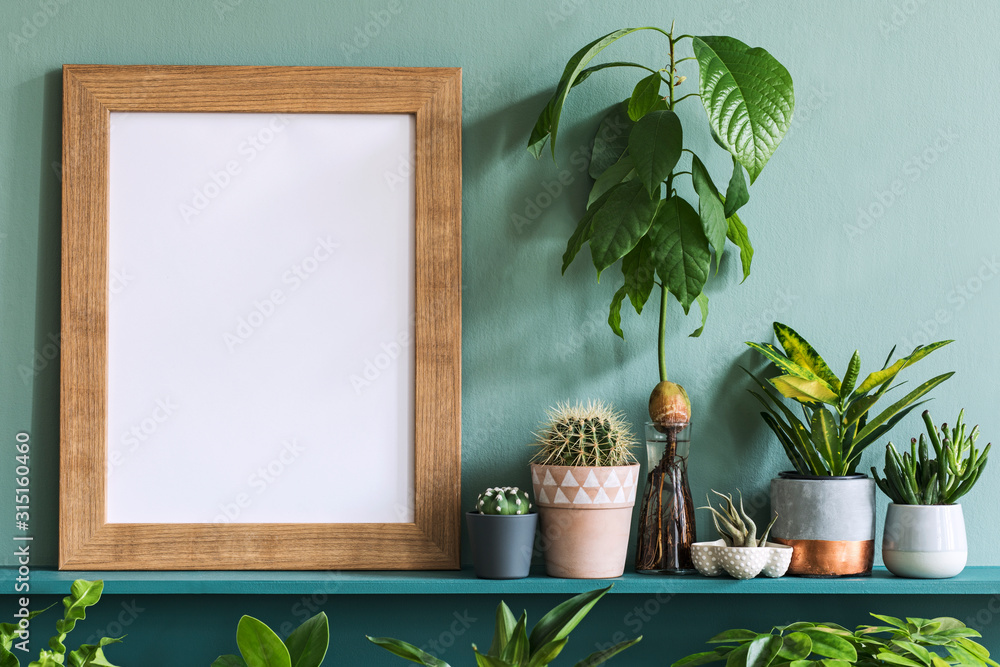 Fototapeta Interior design of living room with brown mock up photo frame on the green shelf with beautiful plants in different hipster and design pots. Elegant personal accessories. Home gardening. Template.