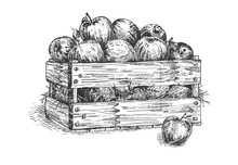 Wooden Crate Box With Fresh Apples
