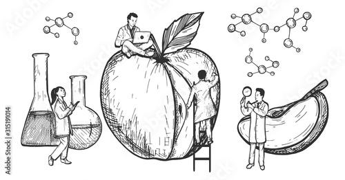 Fototapeta Modified unhealthy apple with GMO obraz