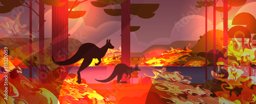 kangaroo running from forest fires in australia animals dying in wildfire bush fire burning trees natural disaster concept intense orange flames horizontal vector illustration