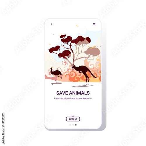 Fototapeta australian animals ostrich kangaroo running from forest fires in australia wildfire bushfire burning trees natural disaster concept intense orange flames smartphone screen mobile app vector obraz