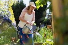 Active Senior Woman Gardening, Watering Plants