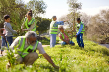 Volunteers Planting Trees In S...