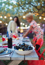 Mussels On Dinner Garden Party...