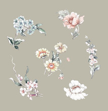 Watercolor Flowers Set,Floral Background For Fashion Prints. Design For Textile, Wallpapers, Wrapping, Paper. Spring Flowery Texture