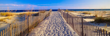 Pathway And Sea Oats On Beach ...