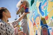 Female Volunteers Painting Vib...