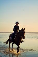 Young Woman Horseback Riding I...