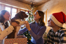 Family Playing With Dog In Christmas Gift Box